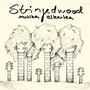 Stringedwood_01